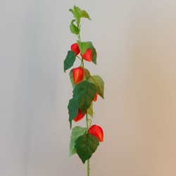 Artificial Chinese Lanterns Stem 88cm - C260 D2