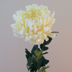 Artificial Bloom Chrysanthemums Cream - C181 D1