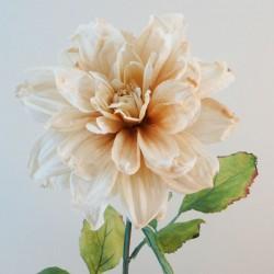 Antique Dahlia Cream | Faux Dried Flowers - D187 EE4