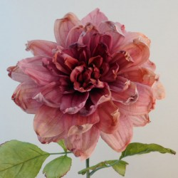 Antique Dahlia Dark Pink | Faux Dried Flowers - D189 EE4