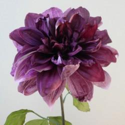 Antique Dahlia Dusky Aubergine | Faux Dried Flowers - D191 EE4