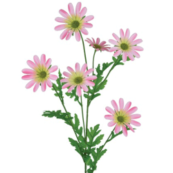 Artificial Daisy Stem Pale Pink - D041 C2