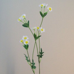 Mini Garden Daisies Stem - D137 D3