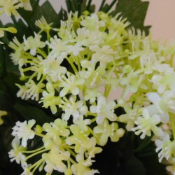 Artificial Elderflowers Bush Cream Green - E021 C1