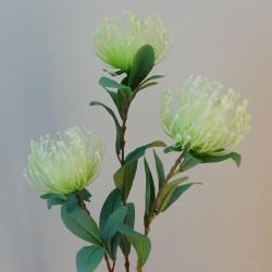 Rydal Artificial Leucospermum Protea Green - L035 AA3