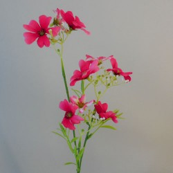 Flax Flowers Hot Pink - F065 H2