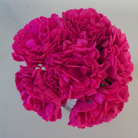 Foam Carnations Posy Hot Pink 6 Pack - C215 T4