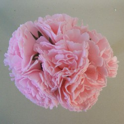 Foam Carnations Posy Baby Pink 6 Pack - C214 T4