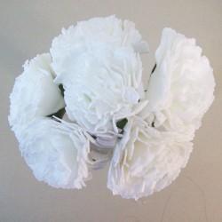 Foam Carnations Posy White 6 Pack - C218 BX12