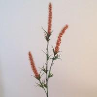 Artificial Fox Tail Flowers Rust - F062 F3