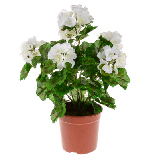 Potted Plants Artificial Geraniums Cream - GER008 OFF