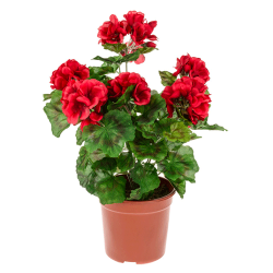 Potted Plants Artificial Geraniums  Red - GER006 OFF