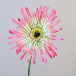 Artificial Gerberas Candy Crush Pink - G024 E1
