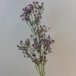 Artificial Gypsophila Aubergine Purple Baby's Breath - G022 F2