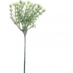 Short Stem Gypsophila Ivory - G045 O4