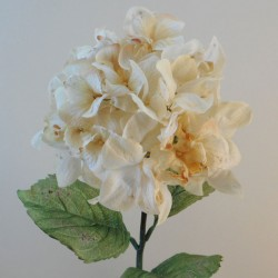 Antique Hydrangea Cream | Faux Dried Flowers - H195 F4