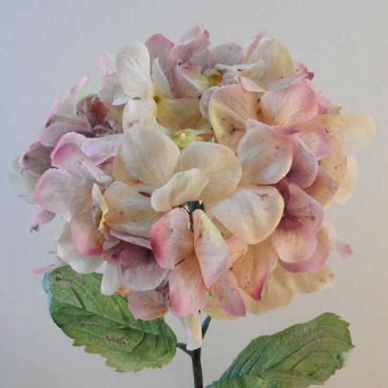 Antique Hydrangea Dusky Pink | Faux Dried Flowers - H196 F4