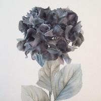 Grey Flowers