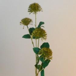 Fireball Lily Olive Green - L047 AA1