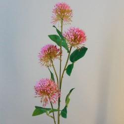 Fireball Lily Pink - L092 AA1