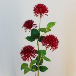 Fireball Lily Red - L089 BB2
