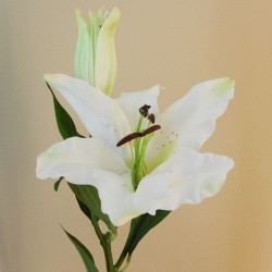 Rydal Artificial Lily White - L032 AA3