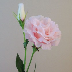 Artificial Double Eustoma Candy Crush Pink - L160 H1