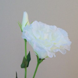 Artificial Double Eustoma Ivory - L161 G1
