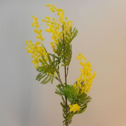 Artificial Mimosa Stem with Leaves 88cm - M022 I2