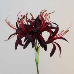 Silk Nerine Lily Red - N004 J3