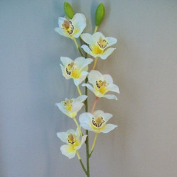 Artificial Cymbidium Orchid Cream and Yellow - O110 K2