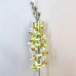 Artificial Cymbidium Orchid Lime Green - O003 KK2