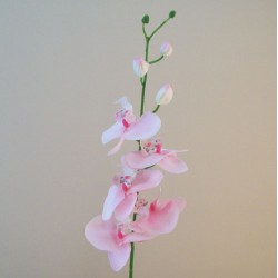 Artificial Phalaenopsis Orchids Candy Crush Pink - O128 AA1