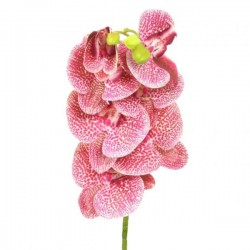 Artificial Phalaenopsis Orchid Pink Freckles - O005 KK3