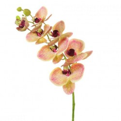 Artificial Phalaenopsis Orchid Fruit Salad - O010 LL4