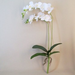 Artificial Phalaenopsis Orchids Plant White without Pot - O122 K1