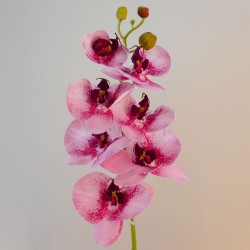 Artificial Phalaenopsis Orchid Two Tone Pink - O139 AA1