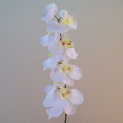 Artificial Phalaenopsis Orchids White - O103 J4