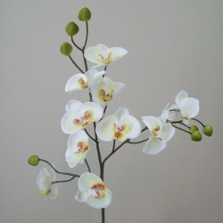 Mini Artificial Phalaenopsis Orchids Cream - O093 I2