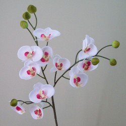 Mini Artificial Phalaenopsis Orchids White and Pink - O094 I2