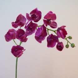 Real Touch Phalaenopsis Orchid Magenta - O118 J1