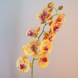 Real Touch Phalaenopsis Orchid Mango and Pink 95cm - O088 BX10