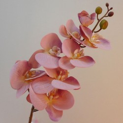 Real Touch Artificial Phalaenopsis Orchid Dusky Pink 99cm - O150 HH4