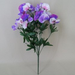 Purple and White Pansies - P068 K2
