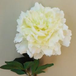 Artificial Giant Floppy Peony Flowers Ivory - P012 J2