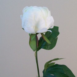 Artificial Peony Buds Large Cream - P152 L2