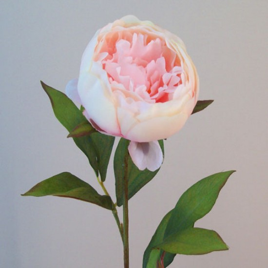 Artificial Peony Flowers Candy Crush Pink - P191