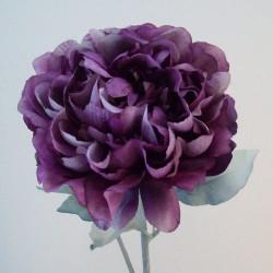 Peony Flowers Aubergine Purple - P215 KK3