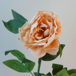 Artificial Peony Flowers Champagne Peach - P115 N1