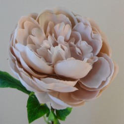 Artificial Peony Flowers Desert Taupe - P120 LL4